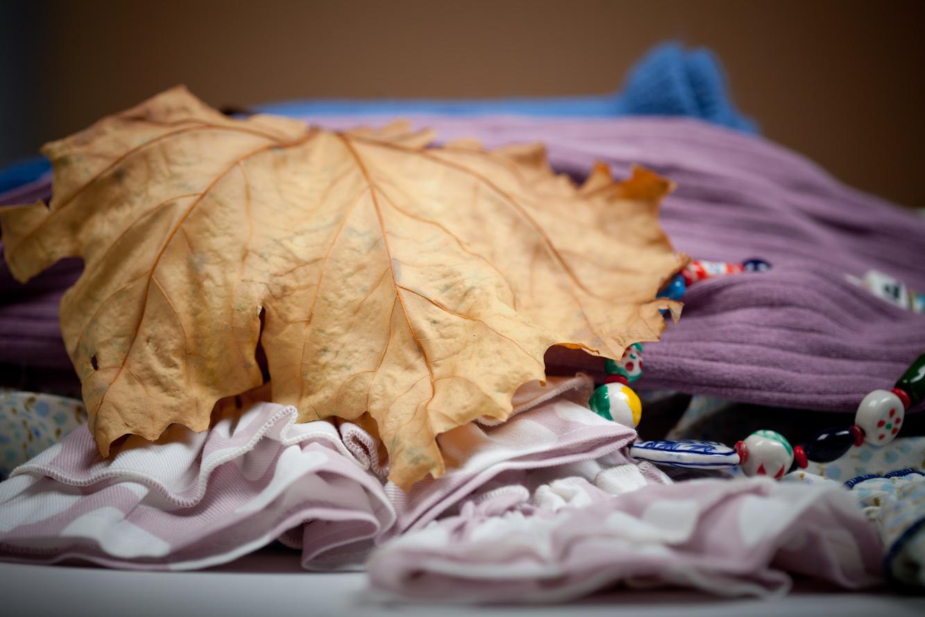 Los colores del otoño son la fuente de inspitación de esta colección de Athina.