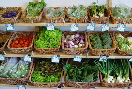 Mejor sabor, mejor olor y colores más atractivos: los alimentos ecológicos superan en calidad a los tradicionales.