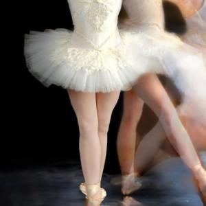 Los vaporosos tutús son el símbolo de las bailarinas: si quieres que el disfraz sea más realista, puedes comprar tul o tela antimosquitos, con el que también lograrás un efecto muy real.